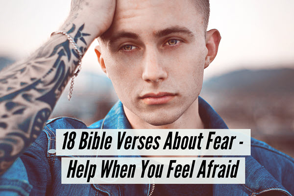 18 Bible Verses About Fear - Help When You Feel Afraid TheHopeLine