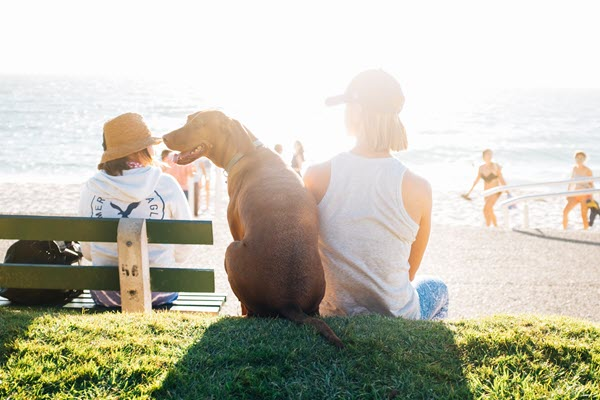 Girl sitting on the beach with her dog ready to enjoy summer 2021 after covid19 coronavirus TheHopeLine