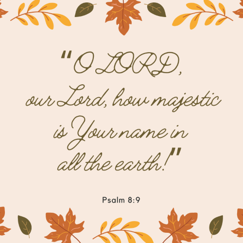 """O LORD, our Lord, how majestic is Your name in all the earth!"""