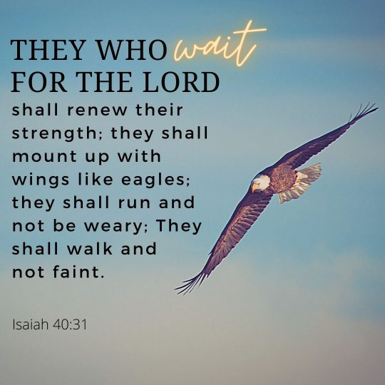 """""""They who wait for the LORD shall renew their strength; they shall mount up with wings like eagles; they shall run and not be weary;"""""""